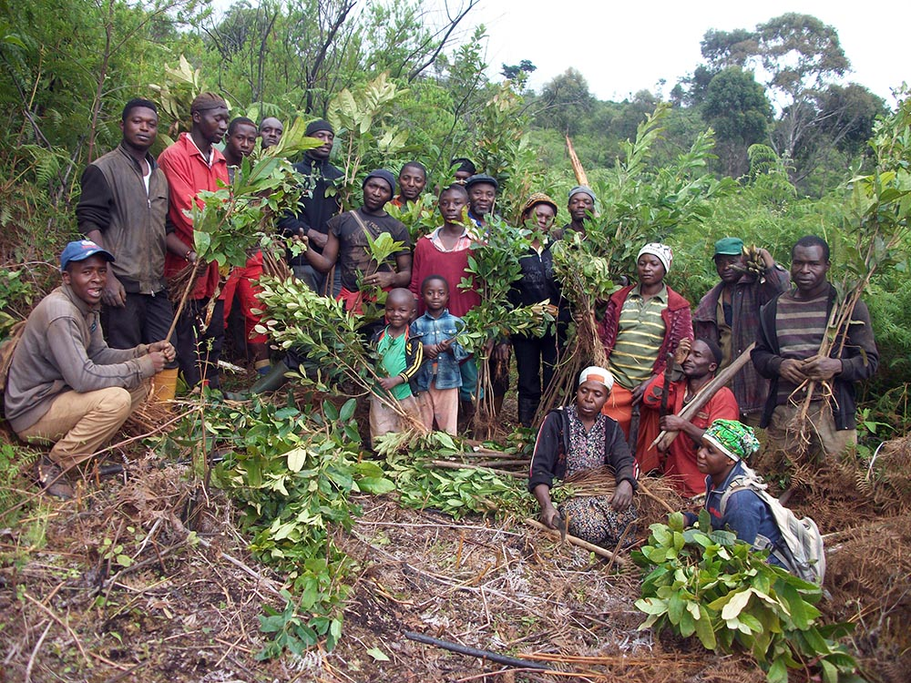 Cameroon Gender and Environment Watch - <b>Cameroon</b><br><br>