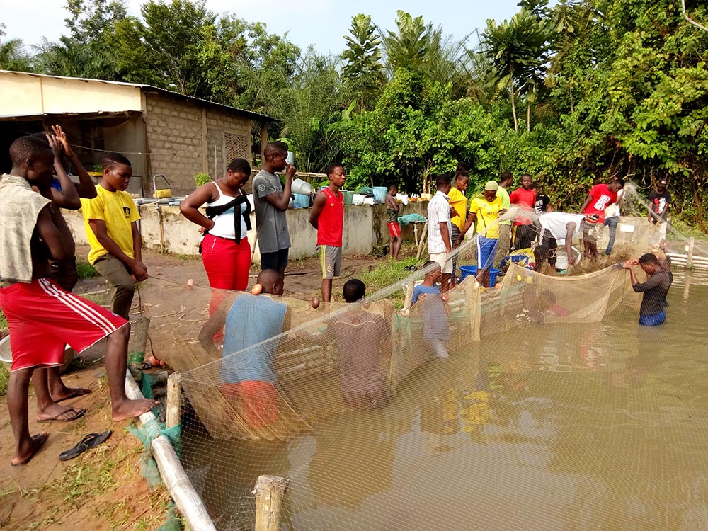 Centre Régional de Recherche et d'Education pour un Développement Intégré  - <b>Benin</b>