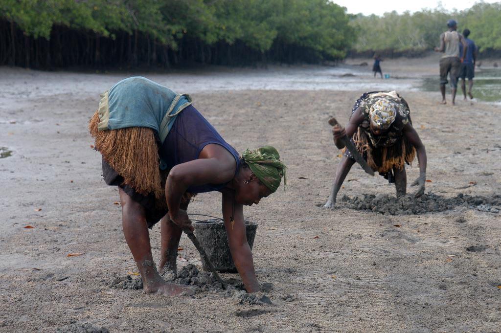 Conselho de Gestão da Área Marinha Protegida Comunitária Urok - <b>Guinea Bissau</b>