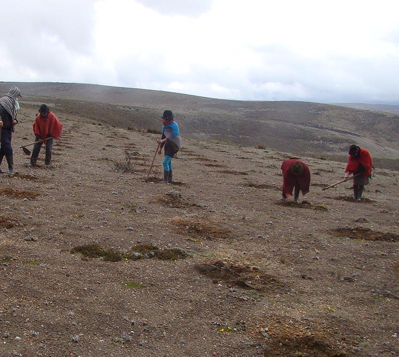 Fondo de Páramos Tungurahua y Lucha contra la Pobreza - <b>Ecuador</b>