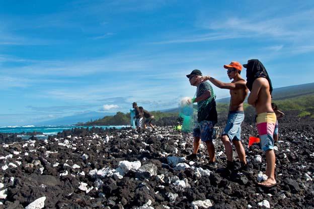 Hui Mālama o Moʻomomi - <b>USA - Hawaii</b><br>