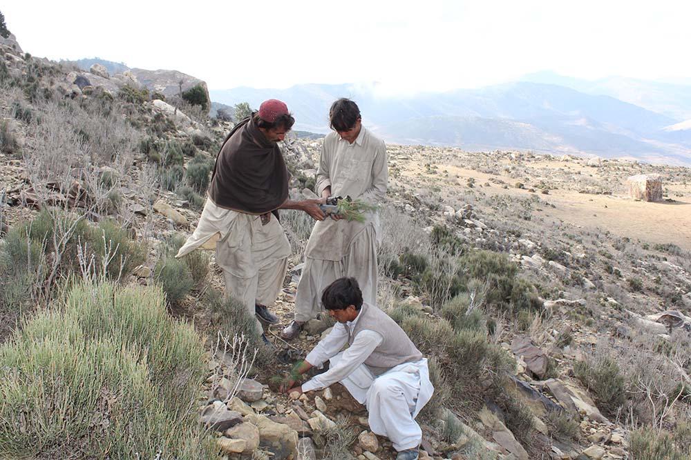 Kasa Ghar Cluster CBO - <b>Pakistan</b><br><br>