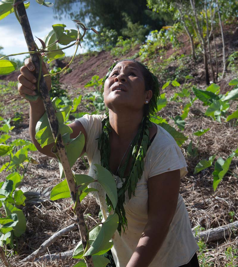 Tamil Resources Conservation Trust  - <b>Micronesia</b><br><br>