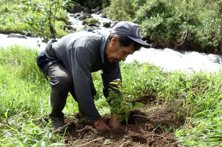 Organización para la Defensa y Conservación Ecológica de Intag (DECOIN) - <b>Ecuador</b><br>